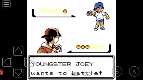 Joey yOUNGSTER.png